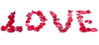 röda petals Arkivbild