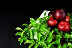5 röda plommoner som staplas med plommonsidor arkivfoto