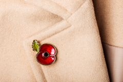Röda Poppy Pin som ett symbol av minnedagen Royaltyfri Bild