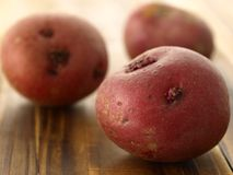 röda potatisar Royaltyfri Foto