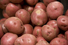 Röda potatisar i livsmedelsbutik Arkivbild