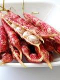 Röda prickiga pärl- bönor på vit Royaltyfri Bild