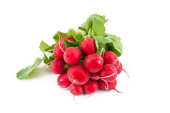 Röda rädisor Royaltyfria Bilder
