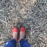 Röda rida skor arkivfoto