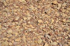 röda rocks Arkivfoto