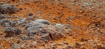 röda rocks Royaltyfri Bild