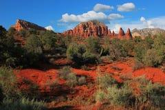 Röda Rocks, Arizona, USA Fotografering för Bildbyråer