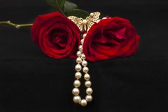 röda romantiska ro royaltyfri bild