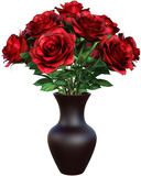 Röda Rose Flowers, rosor som isoleras Royaltyfri Foto