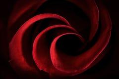 Röda Rose Petals Macro - abstrakt begrepp Royaltyfri Foto