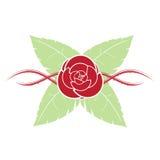 Röda Rose With Thorn And Green sidor Arkivbild