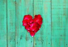 Röda roskronblad i formen av en hjärta på bekymrad antik kricka slösar den wood dörren Royaltyfri Foto