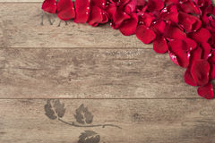 Röda roskronblad på träbakgrunden Rose Petals Border på en trätabell Bästa sikt, kopieringsutrymme den blom- ramen inramniner ser Royaltyfria Foton