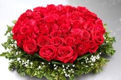 Röda rosor Arkivbild