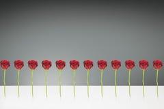 12 röda rosor Arkivfoto