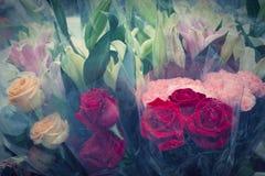 Röda rosor blommar buketten i plast- sjal vid pastellfärgad tappningcolo Arkivfoto
