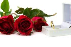 Röda rosor för ett specialt ringer mig På en vit bakgrund Royaltyfria Bilder