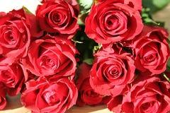 Röda rosor för ValentineÂs dag Arkivbild