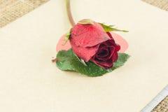 Röda rosor förläggas på den gamla boken Royaltyfri Foto
