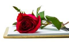 Röda rosor med boken Fotografering för Bildbyråer
