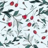 Röda rosor med gröna sidor på en vit bakgrund Sömlös vect royaltyfri illustrationer