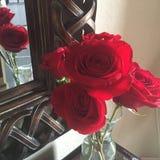 Röda rosor med spegeln Royaltyfri Foto