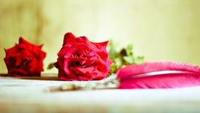 Röda rosor och en dikt som är skriftlig med en forntida penna Arkivfoto