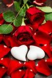 Röda rosor och två vita hjärtor Valentindag- eller bröllopkort arkivbilder