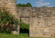 Röda rosor på det bricked tillträdeet royaltyfri foto
