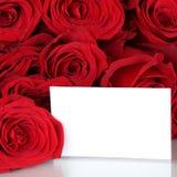 Röda rosor på valentin eller moderdag med copyspace Arkivfoto