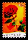 Röda rosor som hälsar stämplar - romansk serie, circa 1997 Arkivbilder