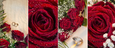 Röda rosor - Valantines dag Royaltyfri Foto