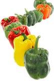 Röda söta spanska peppar för gräsplan och för apelsin Royaltyfria Bilder
