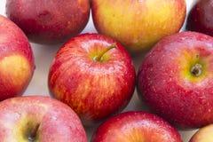 Röda saftiga Apple Arkivfoton