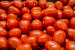 Röda saftiga tomater Arkivbild