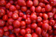 Röda saftiga tomater i marknad Många röda nya tomater arkivbilder