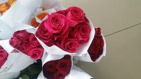 Röda sammetslena rosor Arkivbild