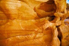 Röda sandkullar i öknen royaltyfria foton