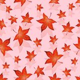 Röda sidor för ljus höst Royaltyfria Bilder