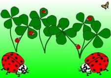 Röda skalbaggar, en fjäril och växt av släktet Trifoliumsidor Vektor Illustrationer