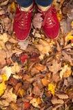 Röda skor i sidor under nedgång arkivfoto