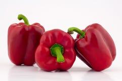Röda spanska peppar Arkivfoton