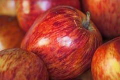 Röda Starking äpplen stänger sig upp arkivbild