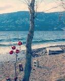 Röda struntsaker på träd på sjön i vinter Royaltyfri Fotografi