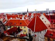 röda tak Fotografering för Bildbyråer
