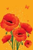 röda tillbaka vallmor Fotografering för Bildbyråer