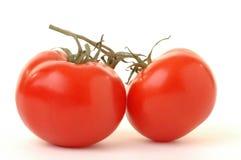röda tomater Royaltyfri Bild