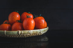 röda tomater Royaltyfria Foton