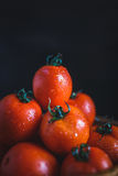 röda tomater Arkivfoton