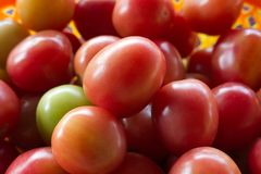 röda tomater En stapel av tomater Royaltyfri Bild